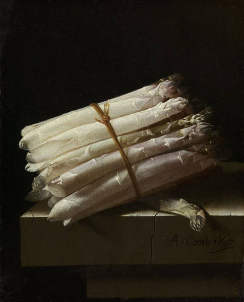 Still Life With Asparagus, Adriaen Coorte Art Print by Quint Lox