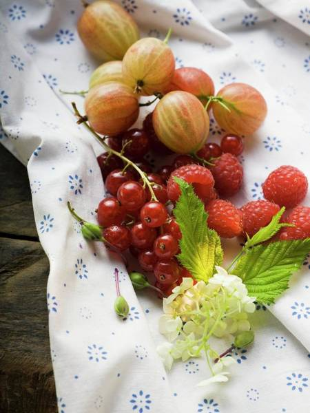 Wall Art - Photograph - Still Life With Berries, Leaves And Elderflower by Foodcollection