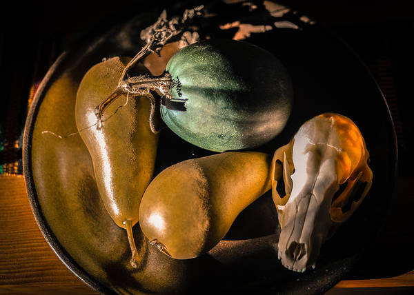 Acorn Squash Photograph - Still Life With Coyote Skull Pears Squash 2 by Ronda Broatch
