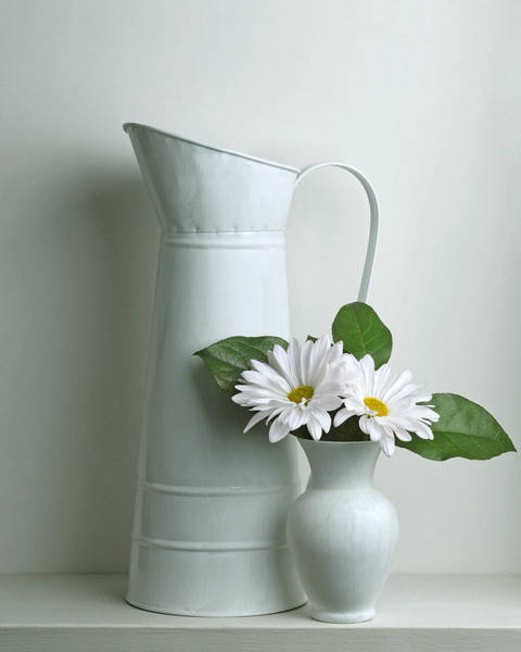 Wall Art - Photograph - Still Life With Daisy Flowers by Krasimir Tolev