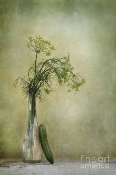 Wall Art - Photograph - Still Life With Dill And A Cucumber by Priska Wettstein