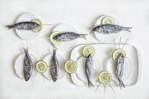 High Key Wall Art - Photograph - Still Life With Fish by Dimitar Lazarov -
