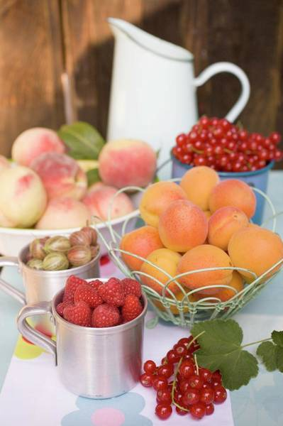 Wall Art - Photograph - Still Life With Fruit And Berries On Table In The Open Air by Eising Studio - Food Photo and Video