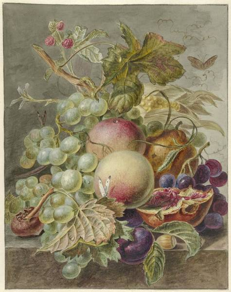 Drawing - Still Life With Fruit by Jan Evert Morel