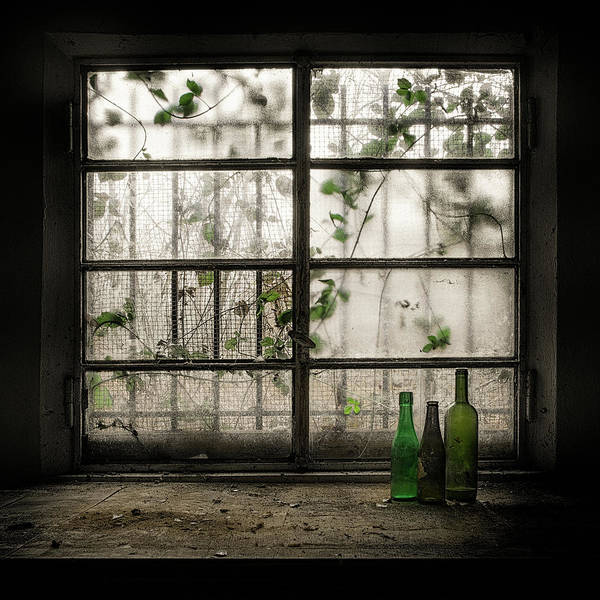 Forgotten Photograph - Still-life With Glass Bottle by Vito Guarino