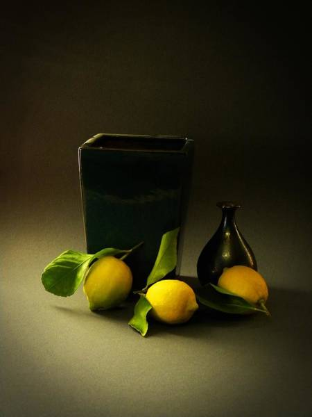 Wall Art - Photograph - Still Life With Lemons by Frank Wilson