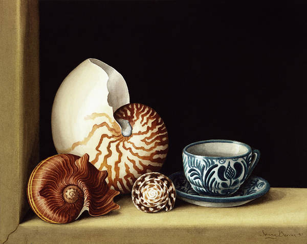 Window Frame Painting - Still Life With Nautilus by Jenny Barron