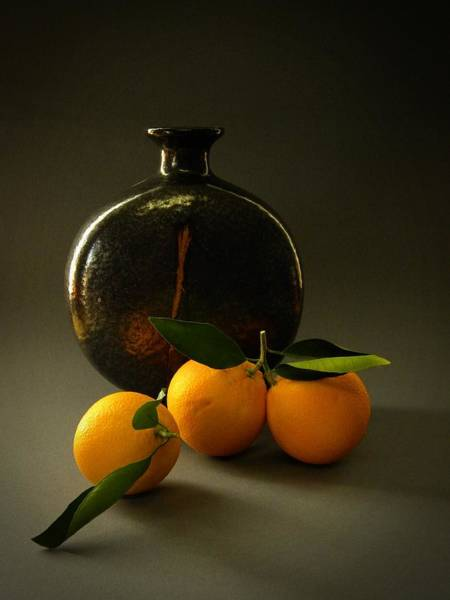 Wall Art - Photograph - Still Life With Oranges by Frank Wilson