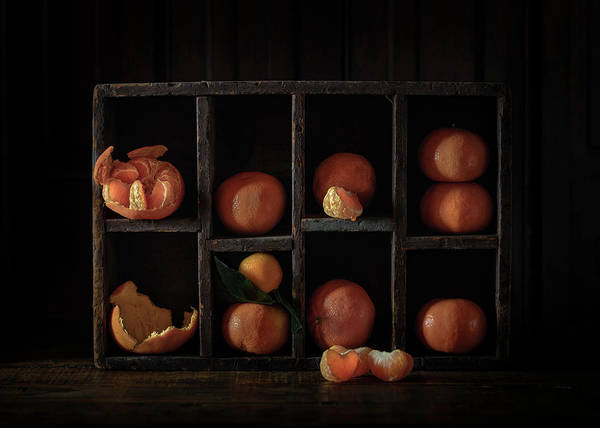 Peel Photograph - Still Life With Oranges by Heather Bonadio