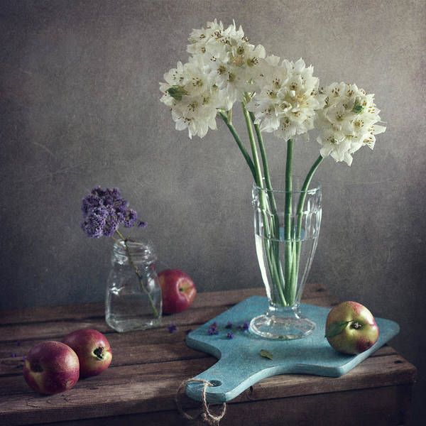 Photograph - Still Life With White And Purple by Copyright Anna Nemoy(xaomena)