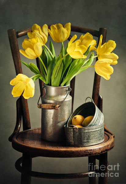 Citrus Fruit Photograph - Still Life With Yellow Tulips by Nailia Schwarz