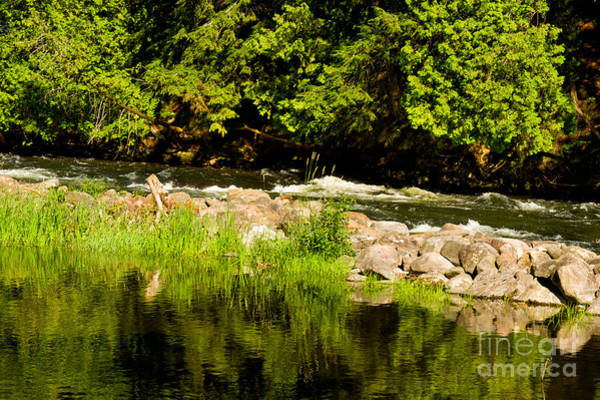 Photograph - Still Pool And Fast River by Les Palenik