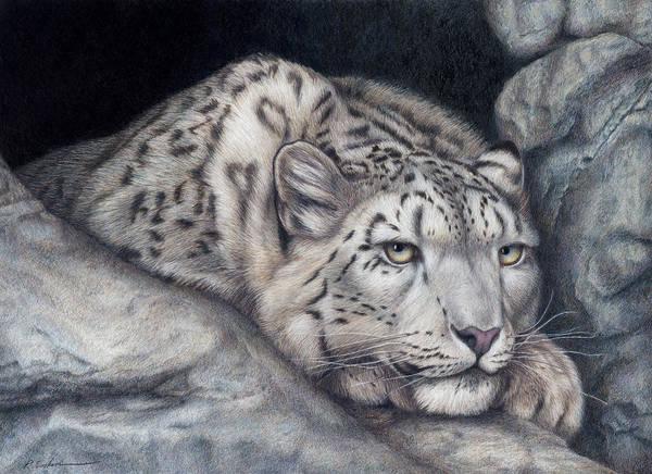 Snow Leopard Wall Art - Painting - Stillnes Like A Stone by Pat Erickson
