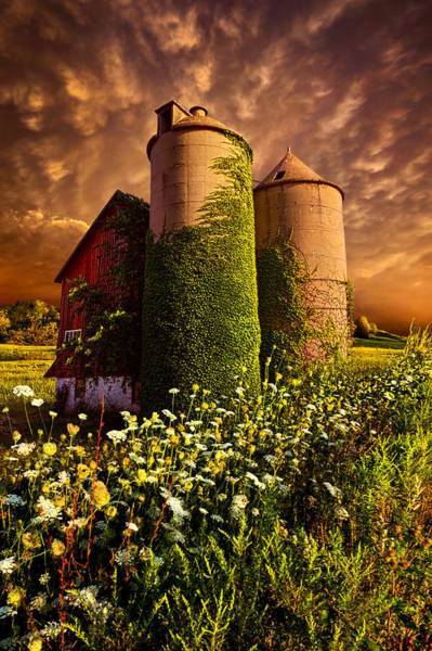 Silo Photograph - Stillness Of Dawn by Phil Koch