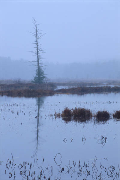 Photograph - Stillness On The Flowage by Bruce Thompson