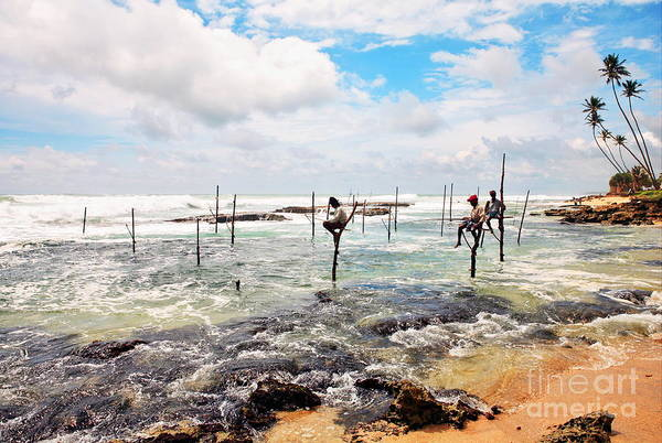 Photograph - Stilt Fishermen by Paul Cowan
