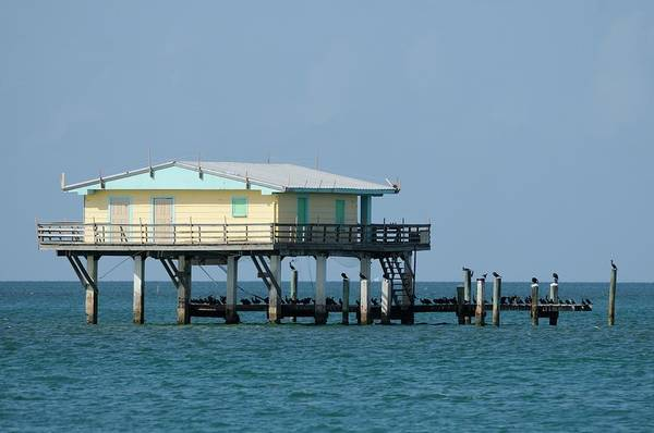 Photograph - Stilt House-yellow And Aqua by Bradford Martin