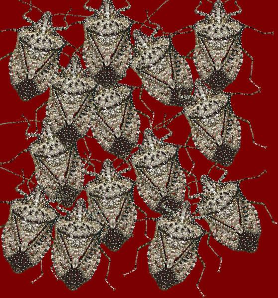 Digital Art - Stink Bugs Bedazzled by R  Allen Swezey