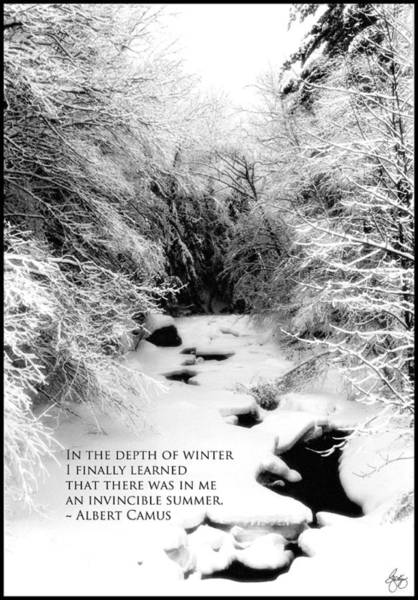 Photograph - Stinson Brook - Camus Quote Print And Poster by Wayne King