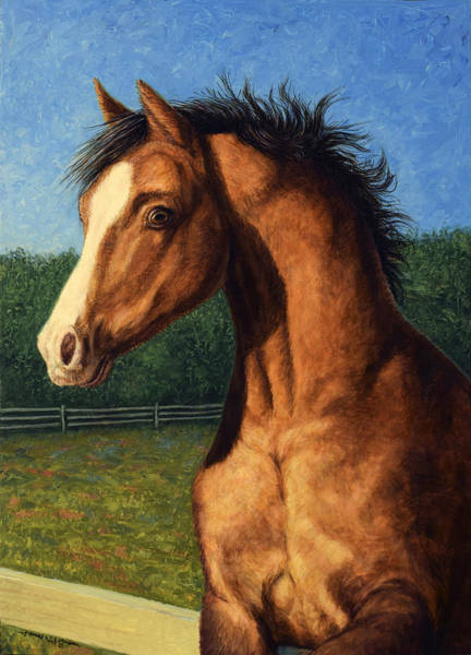 Pasture Wall Art - Painting - Stir Crazy by James W Johnson