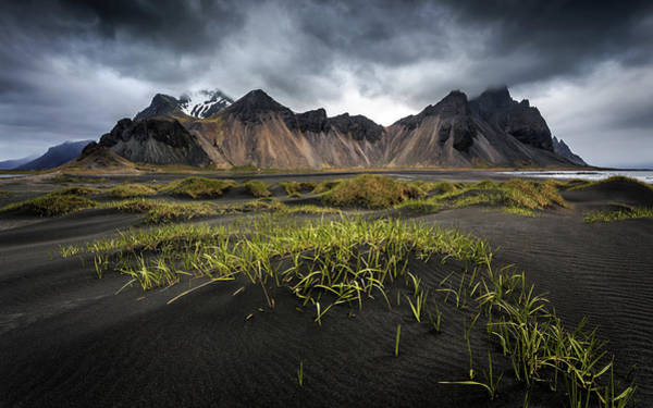 Iceland Wall Art - Photograph - Stokksnes by Sus Bogaerts