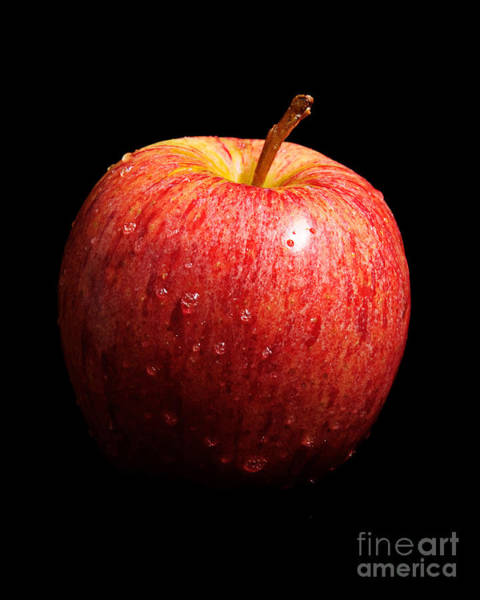 Photograph - Stolen Apple by Andee Design