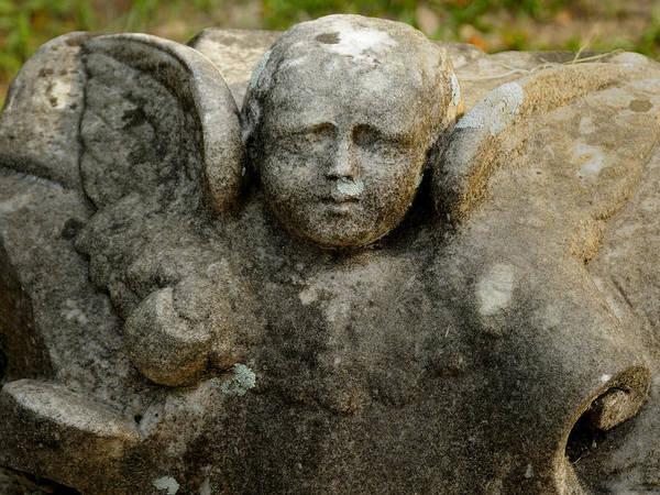 Photograph - Stone Angel by Bradford Martin