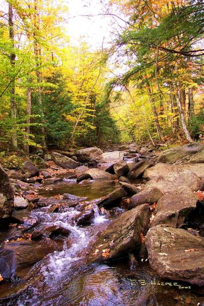 Photograph - Stone Brook I by R B Harper