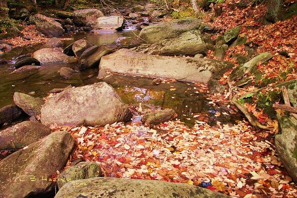 Photograph - Stone Brook II by R B Harper