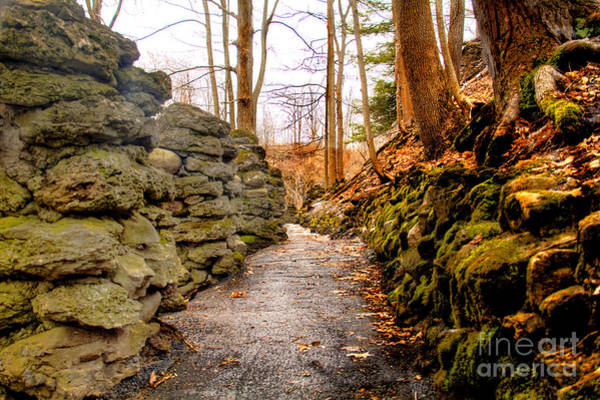 Photograph - Stone Cold Walkway by Jim Lepard