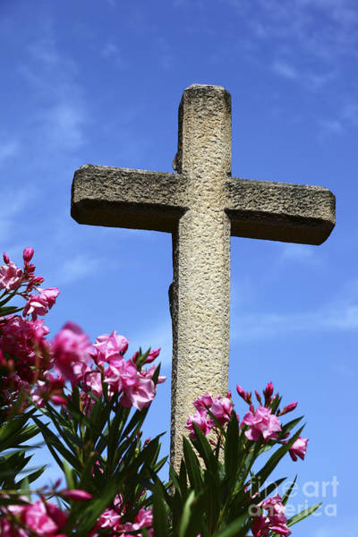 Photograph - Stone Cross And Pink Flowers by James Brunker