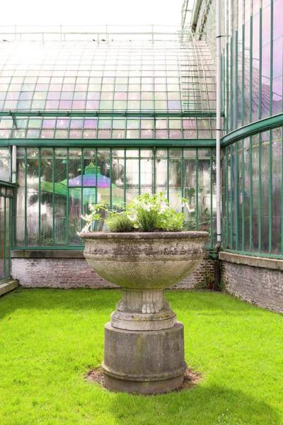 Glasshouse Photograph - Stone Flower Pot With Glass House by Ton Kinsbergen/science Photo Library
