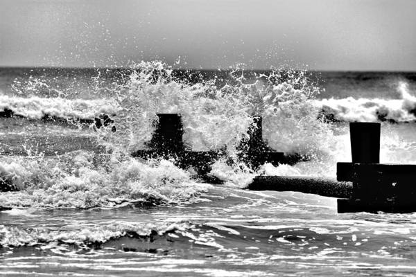 Photograph - Stone Harbor 211 by John Feiser