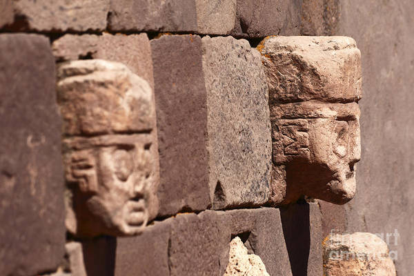 Photograph - Stone Heads At Tiwanaku by James Brunker