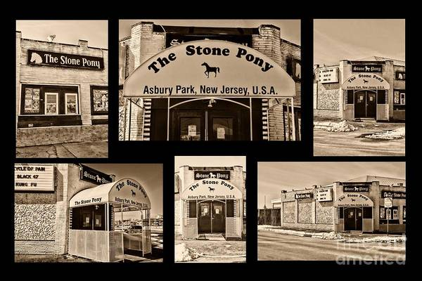 Wall Art - Photograph - Stone Pony Montage by Paul Ward