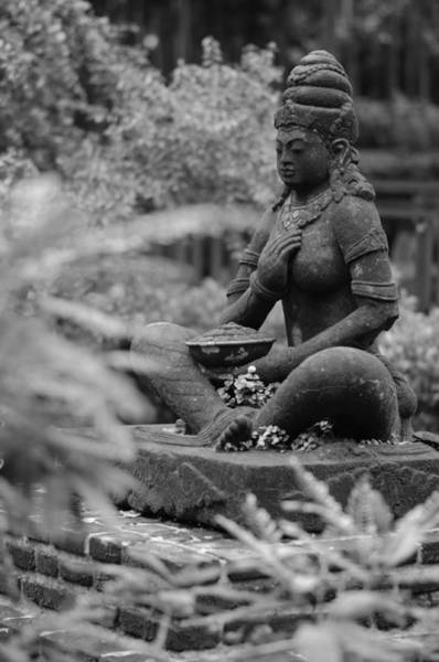 Photograph - Stone Statue by Miguel Winterpacht