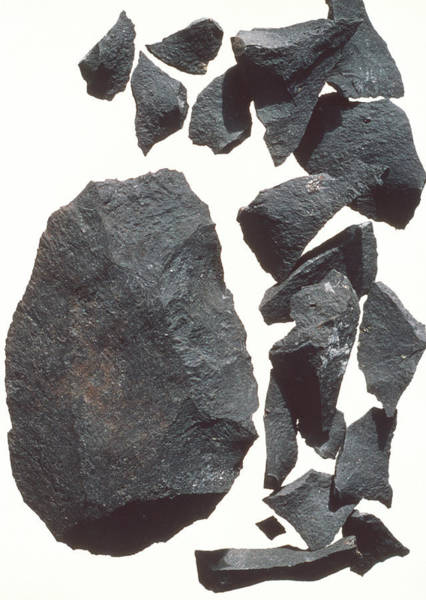 Prehistoric Photograph - Stone Tool by John Reader/science Photo Library
