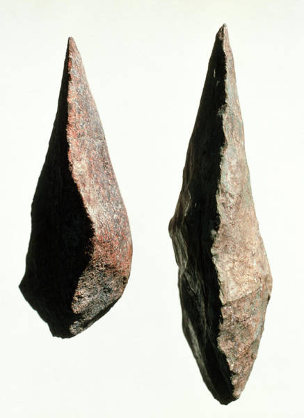 Prehistoric Photograph - Stone Tools by John Reader/science Photo Library