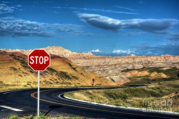 Photograph - Stop At The Badlands by Mel Steinhauer