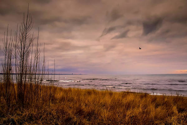 Photograph - Storm Approaching At Dusk by Eduardo Tavares