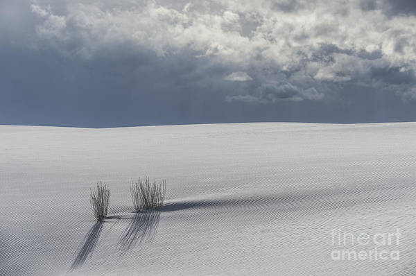 Wall Art - Photograph - Storm At White Sands by Sandra Bronstein