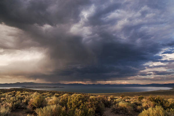 Photograph - Storm Cell Over Mono Lake by Cat Connor