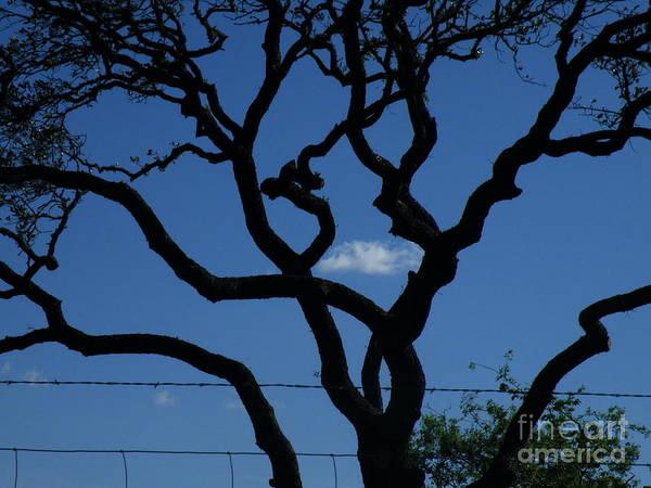 Wire Wrap Photograph - Storm Chaser by Joe Pratt