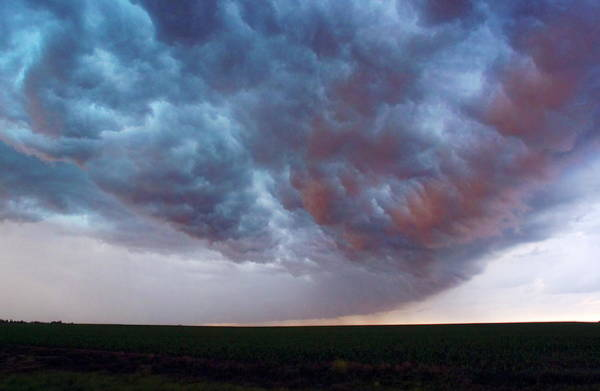 Shelf Cloud Photograph - Storm Clouds by Jim Reed/science Photo Library