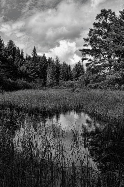 Photograph - Storm Clouds Rolling In Over The Creek by Dale Kauzlaric