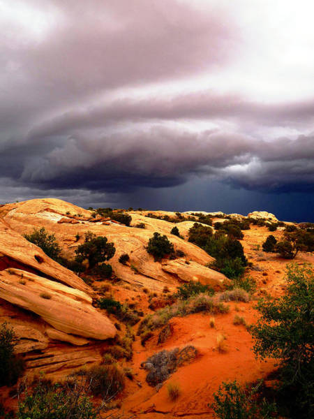 Photograph - Storm In The Desert by Tranquil Light  Photography