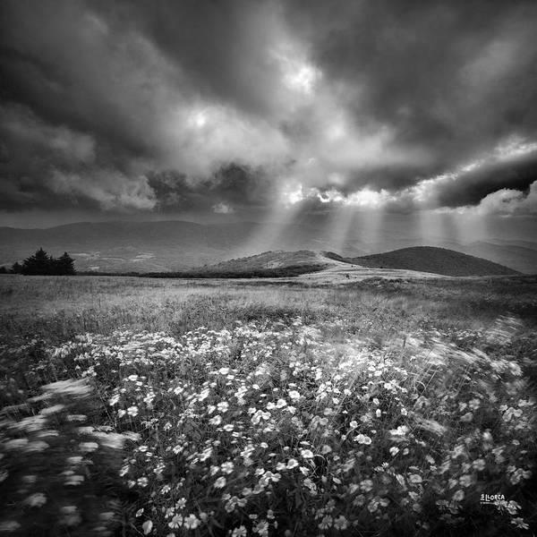 Storm Over Whitetop Mountain Art Print