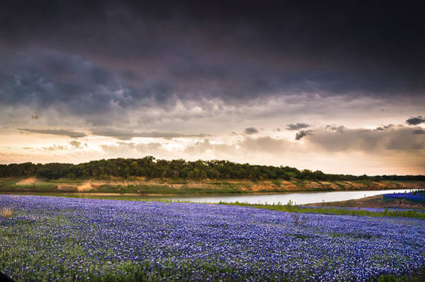 Wall Art - Photograph - Storm Over Wildflower Field by Ellie Teramoto