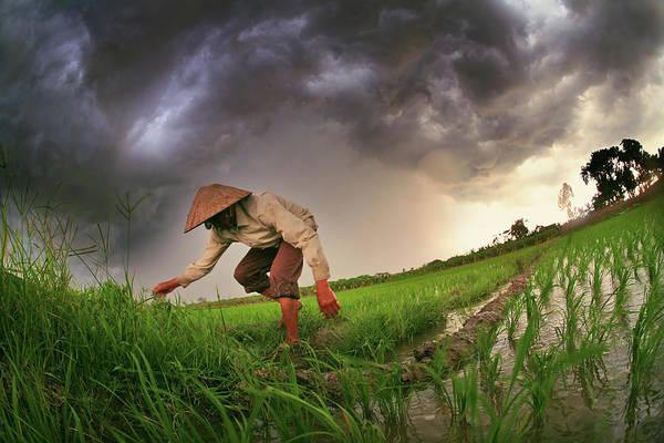 Senior Adult Photograph - Storm by Vietnam