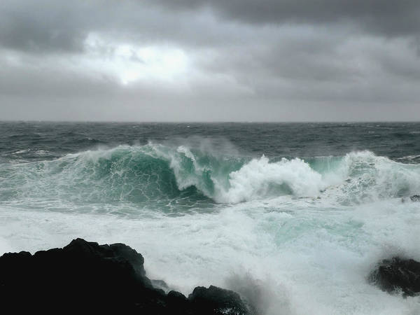 Photograph - Storm Watching by Micki Findlay